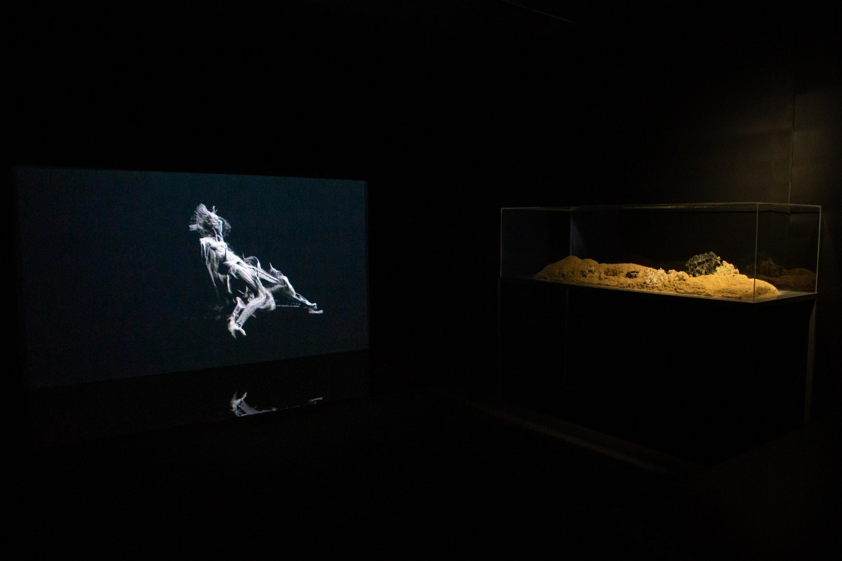 Assad Khan and Patricia Wu Wu, 'THE DUST [N]FORCER', 2019. Video installation, Trading Zone, 2019. Image courtesy of Talbot Rice, The University of Edinburgh